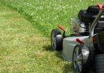 Do Electric Lawn Mowers Need Oil